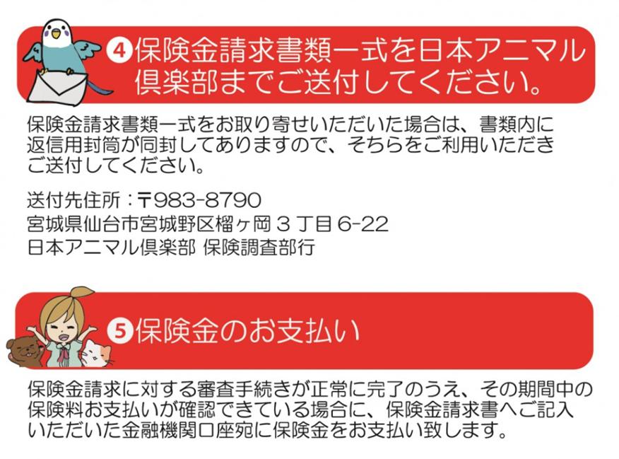 ③治療が終了しましたら保険金請求書を作成してください。 ④保険金請求書を日本アニマル倶楽部までご送付ください。 ⑤保険金のお支払い