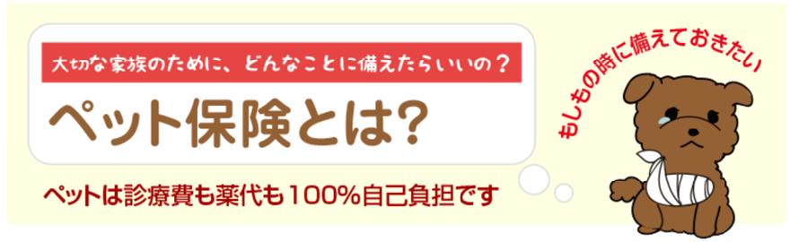 もしもの時に備えておきたい!日本アニマル倶楽部(日本アニマルクラブ)のペット保険プリズムコールとは?