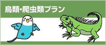 日本アニマル倶楽部のペット保険 鳥類・爬虫類プラン