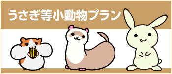 日本アニマル倶楽部のペット保険 うさぎ等小動物プラン