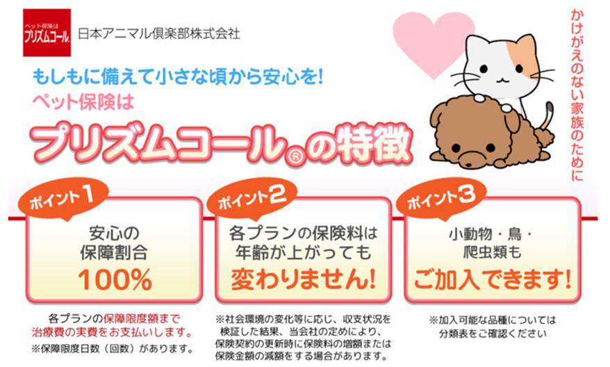 日本アニマルクラブのペット保険プリズムコールの特徴、安心の保障割合100%、各プランの保険料は年齢が上がっても変わりません。犬猫だけでなく、鳥、爬虫類、小動物も加入できます。