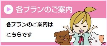 各プランのご案内 日本アニマル倶楽部のペット保険の各プランの詳細はこちらへ