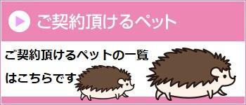 日本アニマル倶楽部のペット保険にご契約いただけるペットの一覧(ペット分類表)